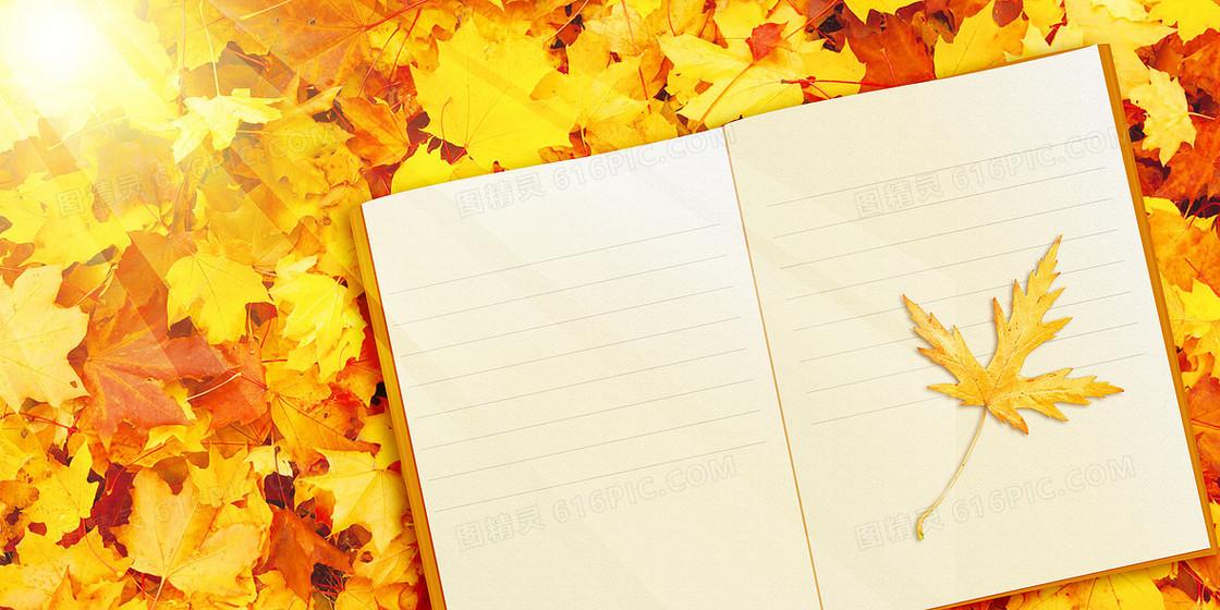 秋天枫叶摄影图合成创意背景