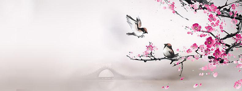 中国风梅花小鸟树枝背景