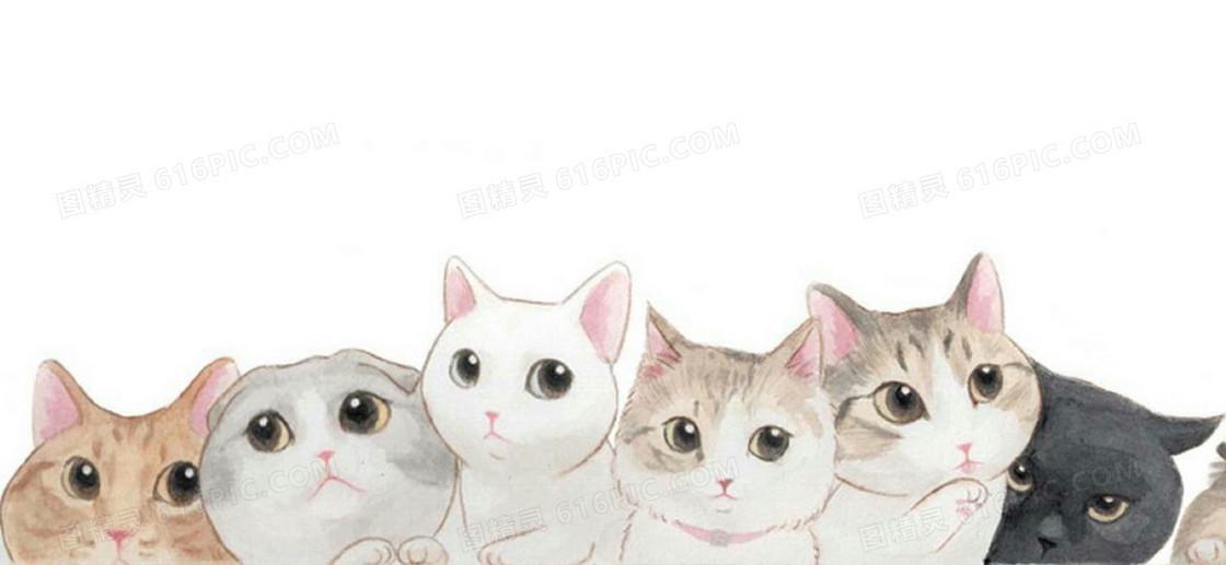 手绘猫咪背景
