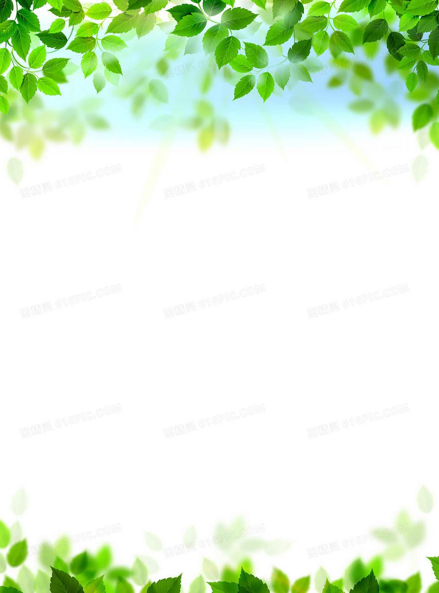 矢量清新绿色树叶背景