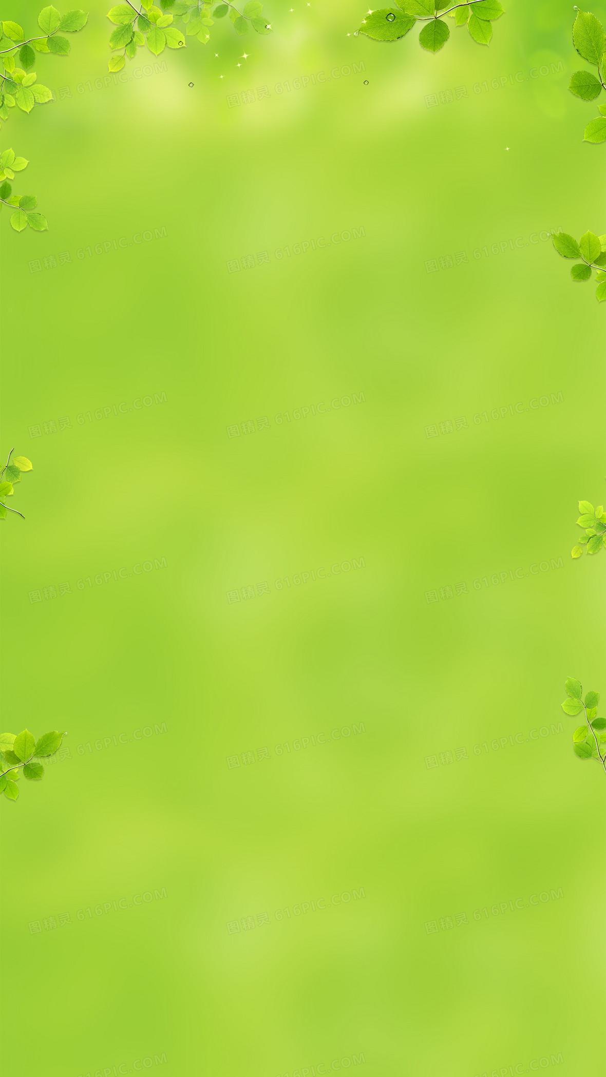 绿色清新树叶边框背景