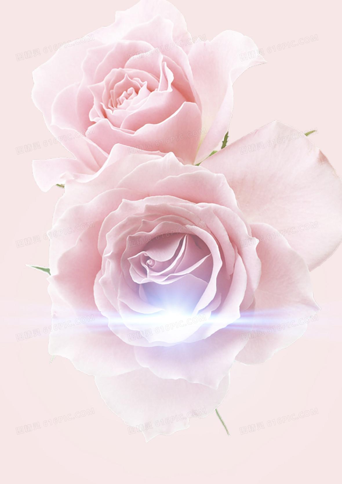 粉玫瑰海报背景素材