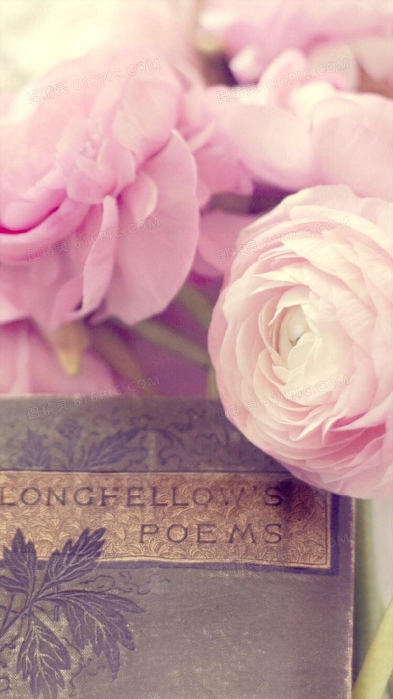 唯美浪漫粉色玫瑰H5背景