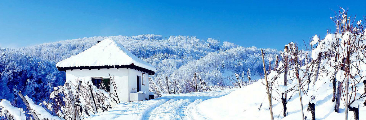 冬天雪景banner创意设计背景图片下载_1920x633像素