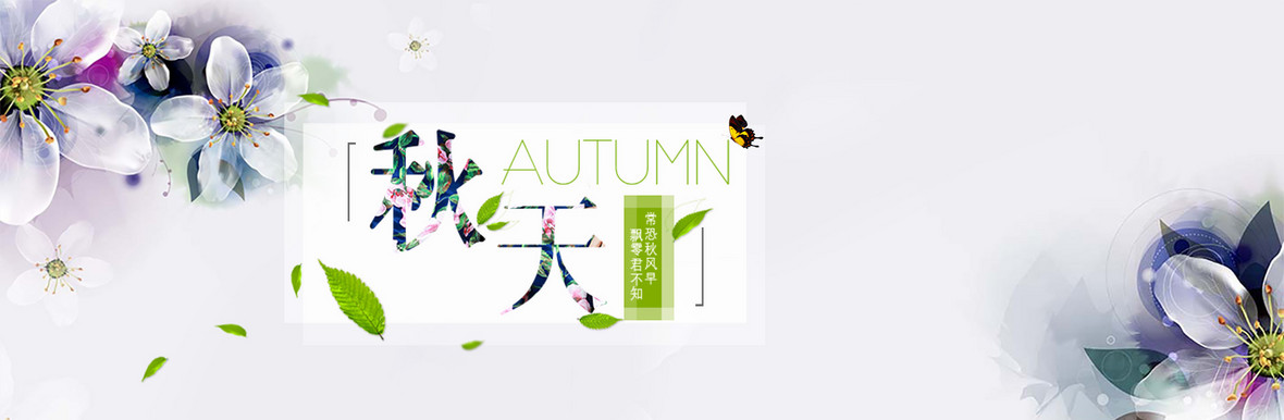 秋天花朵海报banner小清新简约 图精灵为您提供小清新背景