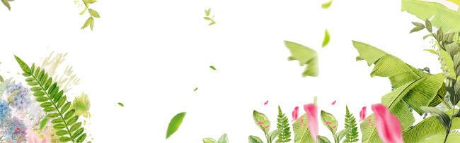 春季夏季浪漫背景树叶背景花朵清爽夏天