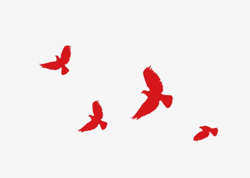 和平鸽图片免费下载_高清png素材_图精灵
