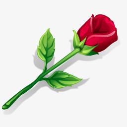 一只红玫瑰花图标图片免费下载 Png素材 编号1pki46klz 图精灵