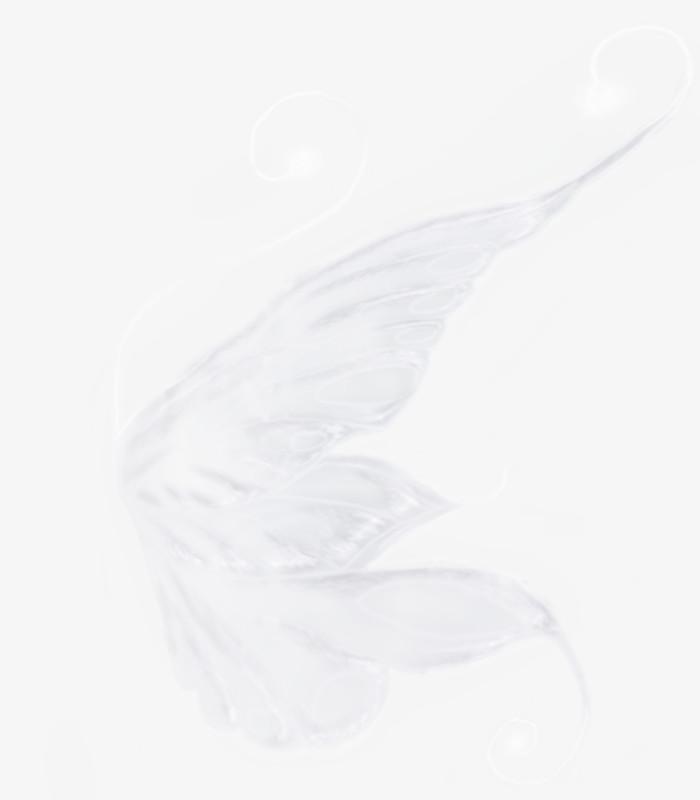 免抠元素 装饰图案 > 羽毛飘落素材羽毛 梦幻翅膀  图精灵为您提供