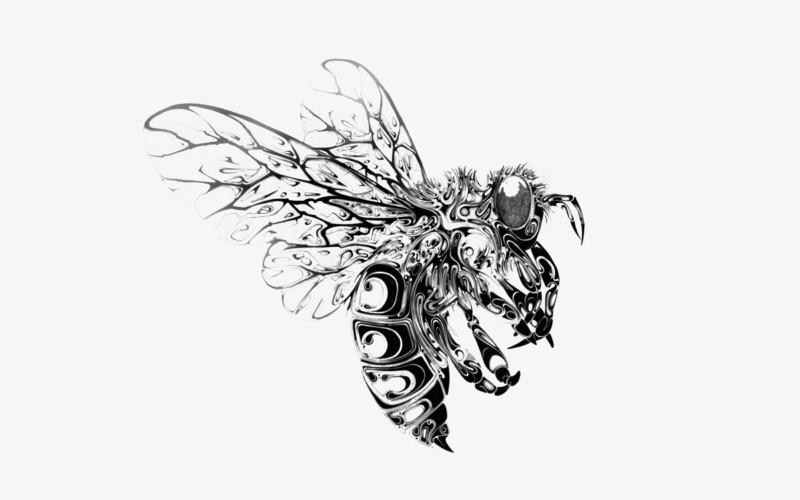 手绘蜜蜂图片素材