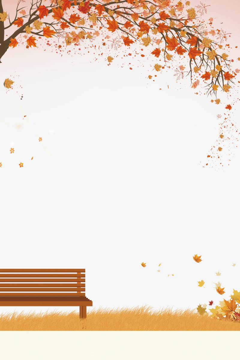 秋天秋叶装饰小清新边框图片免费下载_高清png素材_图