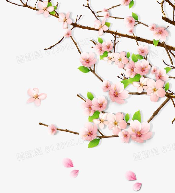 春天绿意桃花桃树枝