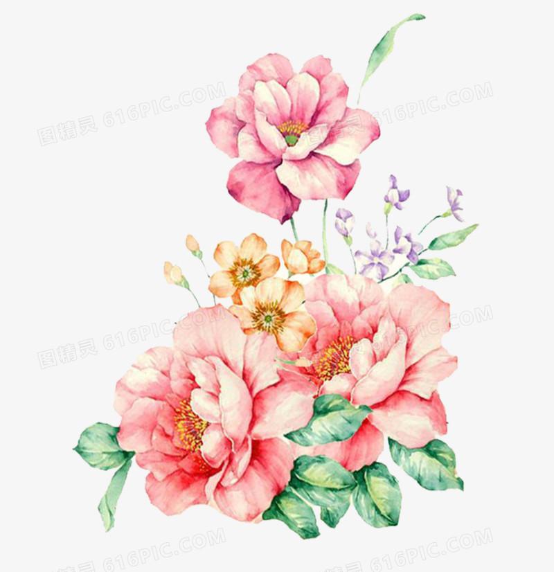 粉色手绘花牡丹花