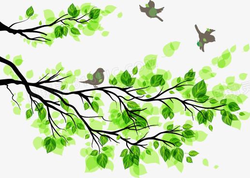 春天清新树叶树枝