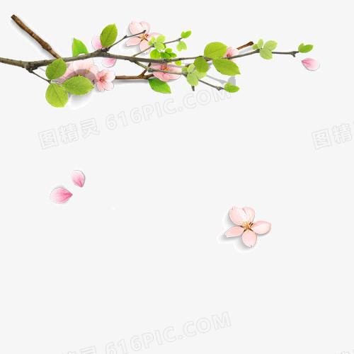 春天的树枝矢量素材图片