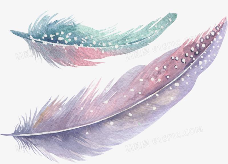 唯美手绘水彩风彩色羽毛