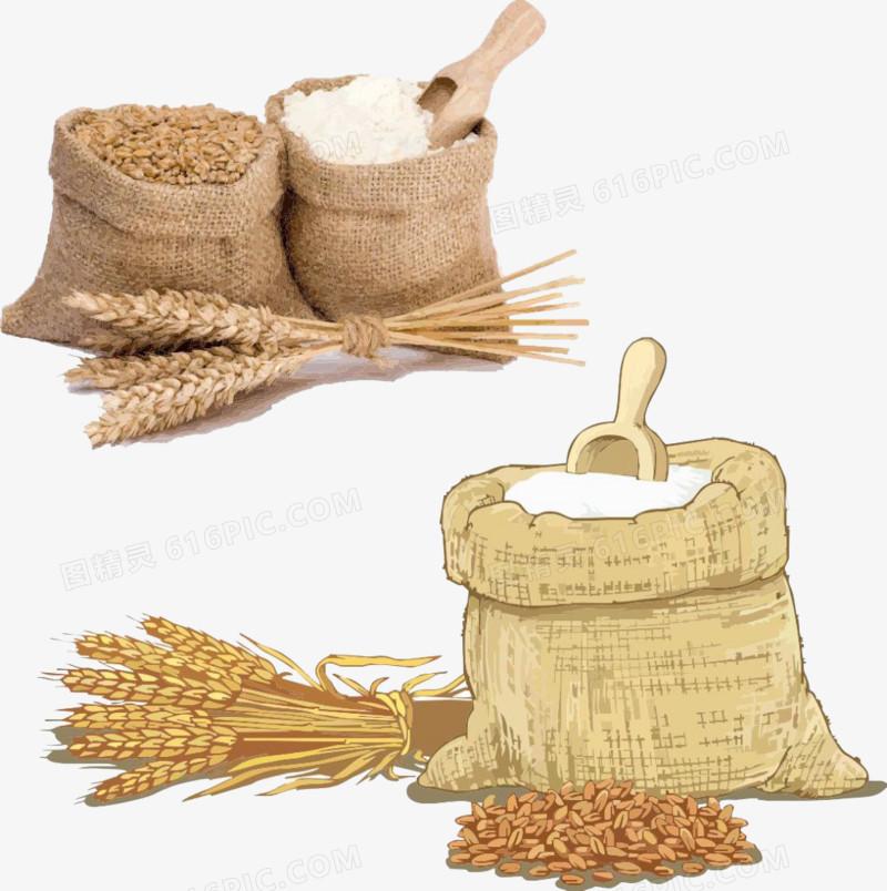 水稻图片免费下载_高清png素材_图精灵