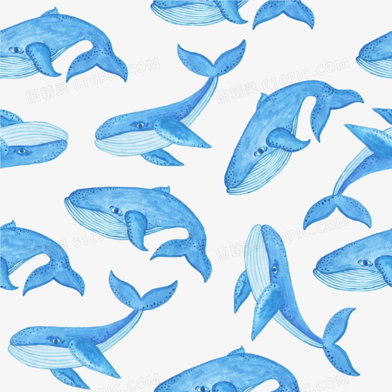 水彩鲸鱼平铺图案图片免费下载_高清png素材_图精灵