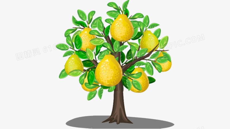 果树图片免费下载_高清png素材_图精灵