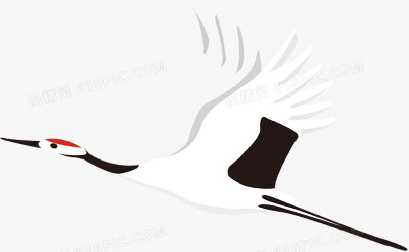 白鹤图片免费下载_高清png素材_图精灵