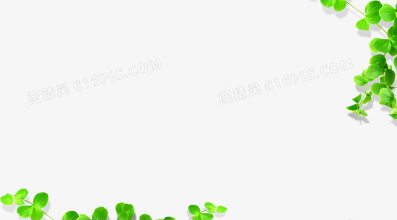树藤图片免费下载_高清png素材_图精灵