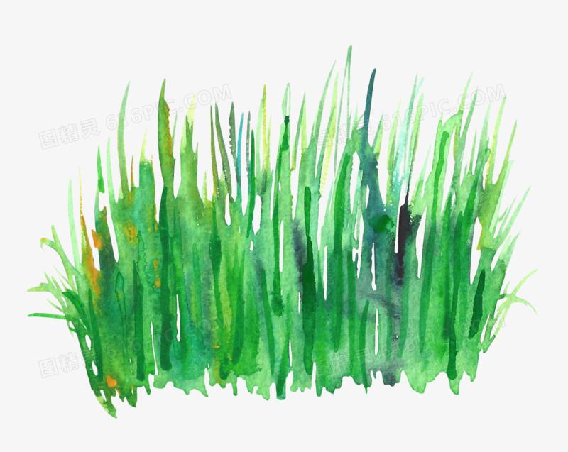 水彩草丛图片免费下载_高清png素材_图精灵