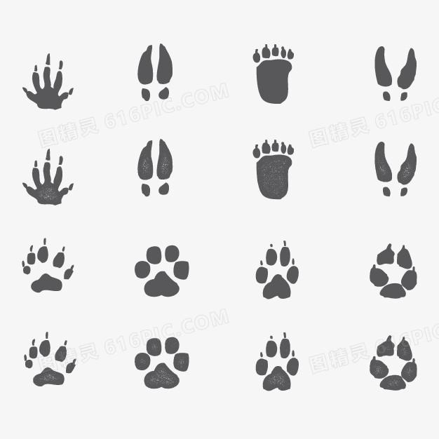 矢量动物爪印图片免费下载_高清png素材_图精灵