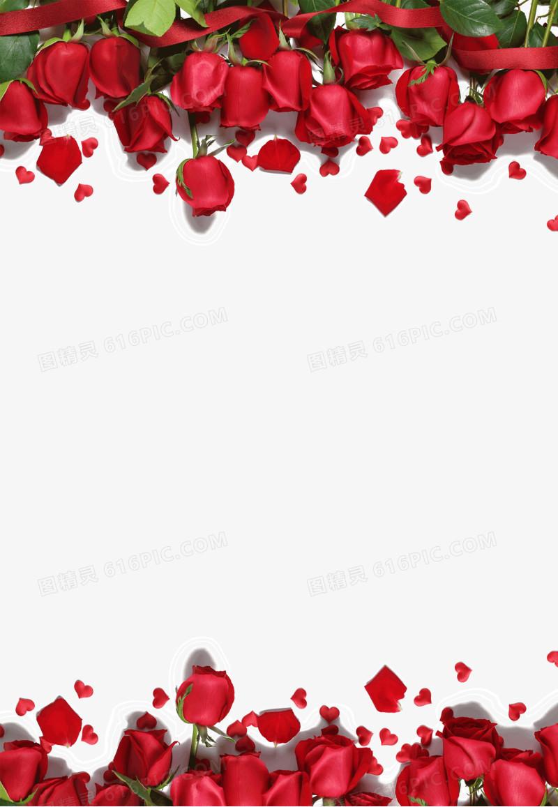 红色玫瑰花边框图片免费下载_高清png素材_图精灵