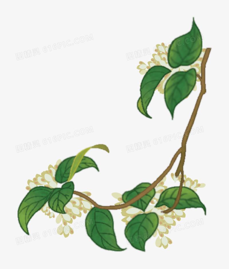 图精灵 免抠元素 卡通手绘 > 桂花树枝矢量   图精灵为您提供桂花树枝